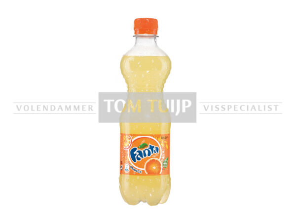 Frisdrank Fanta 0,5l